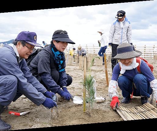 植樹活動への参加