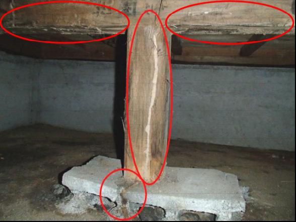 和室床下のシロアリ被害