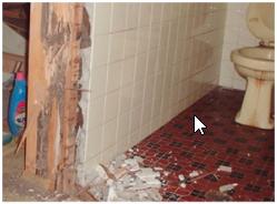 被害を受けたトイレ横の柱