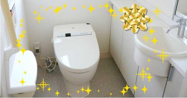 ちょっとずつ大掃除(4)トイレの汚れ別・徹底そうじ方法編
