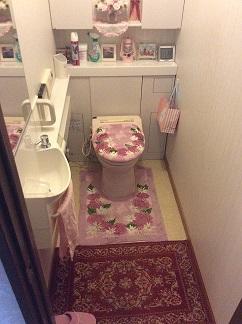 収納も充実させ広々としたトイレにしたい>